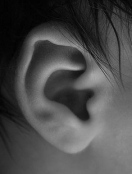 """Baby Ear."" Casequin, http://www.flickr.com/photos/ericcasequin/3128860080/"