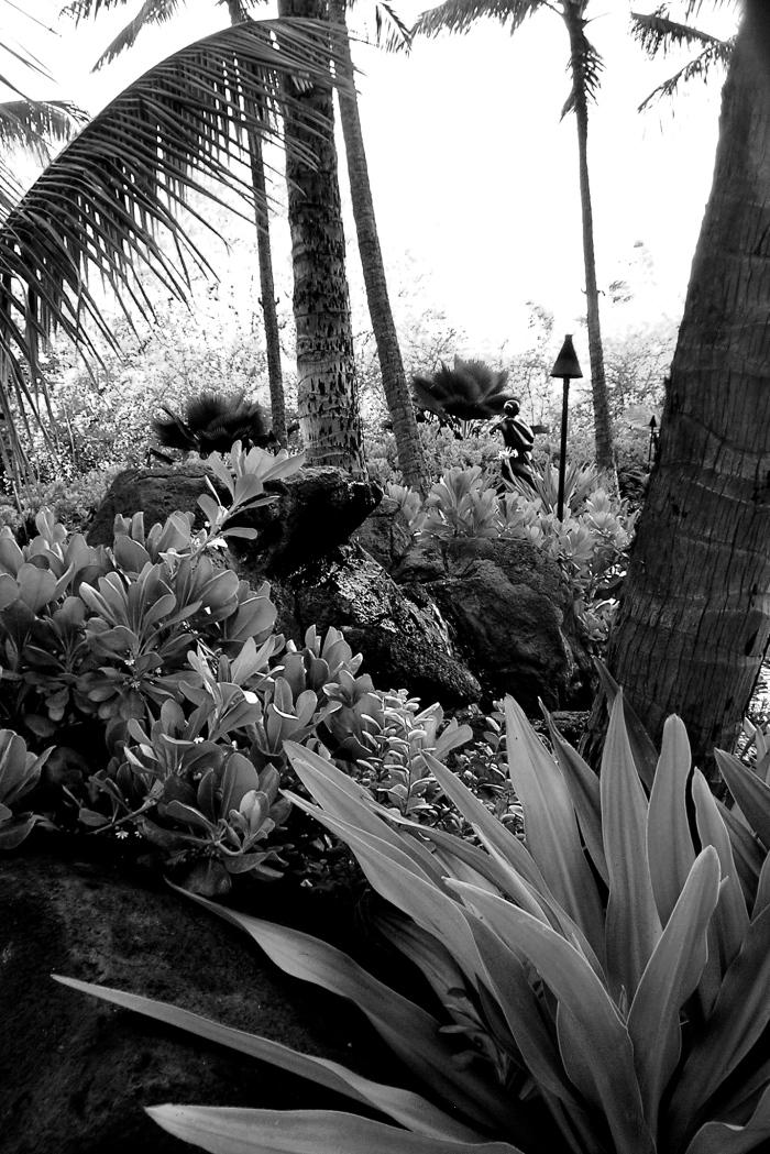 """""""Enter the Garden."""" PPR_Scribe"""